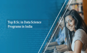 Bachelor of Science – (  B.SC ) in Indore