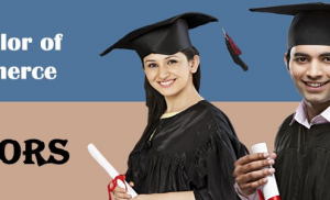 Bachelor of Commerce – B.Com (Honors) in Indore