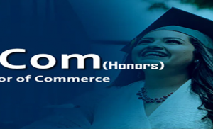 Bachelor of Commerce – B.Com (Honors)in INDORE