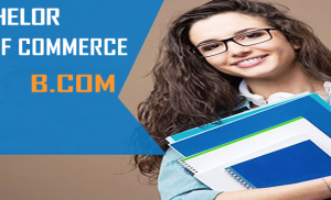 Bachelor of Commerce – (B.Com) in Indore